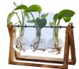 XXXFLOWER Plant Terrarium with Wooden Stand, Air Planter Bulb Glass Vase Metal Swivel Holder Retro T