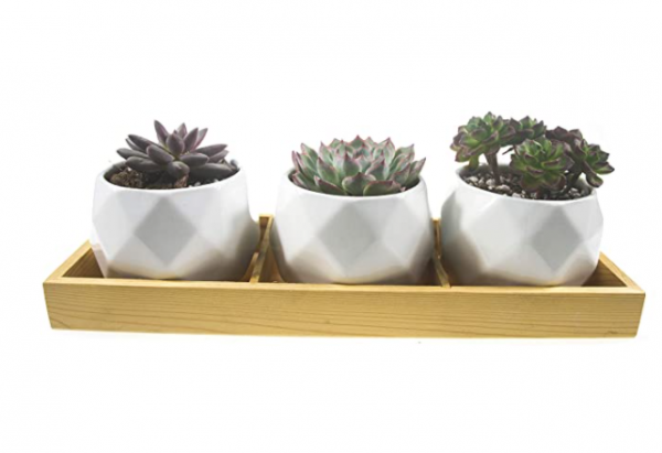 Frespersy Succulent Planter Pot with Bamboo Tray, Small Ceramic Flower Plant Pots Indoor, Home Décor Gifts, Pack of 3 (Diamond pots)