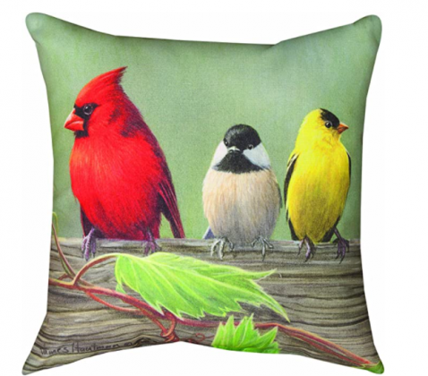 Manual Climaweave Indoor/Outdoor Square Decorative Throw Pillow, 18-Inch, Birds on a Line Cardinal