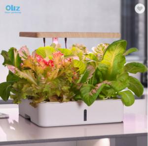 Oliz Z202 Smart garden home indoor fiberglass vegetable planters box artificial plant plastic self w