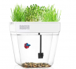 Back to the Roots Water Garden, Self-Cleaning Fish Tank That Grows Food, Mini Aquaponic Ecosystem (G