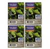 Better Homes and Gardens Fresh Cut Frasier Wax Cubes (4 Pack - 24 Cubes)