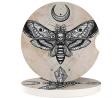 Car Drink Holder Coasters 2 Pack Dead Skull Head Hawk Moth with Luna Stone Cork Cup Holder Cupholder