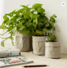 Garden washable Kraft paper flower pot waterproof kraft paper pot bag