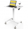 Mobile Sit-Stand Desk Adjustable Height Laptop Desk Cart Ergonomic Table Small Standing Desk with Pn