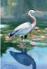 Toland Home Garden 109996 Reflecting Heron 28 x 40 Inch Decorative, House Flag-28