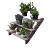 Wooden home succulent plant rack, garden pot rack